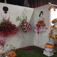 The Witness Garden Show